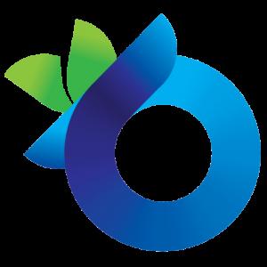 Transparant Linkit Logo